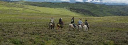 Wide grasslands