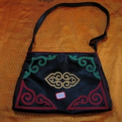 Handbag with new design